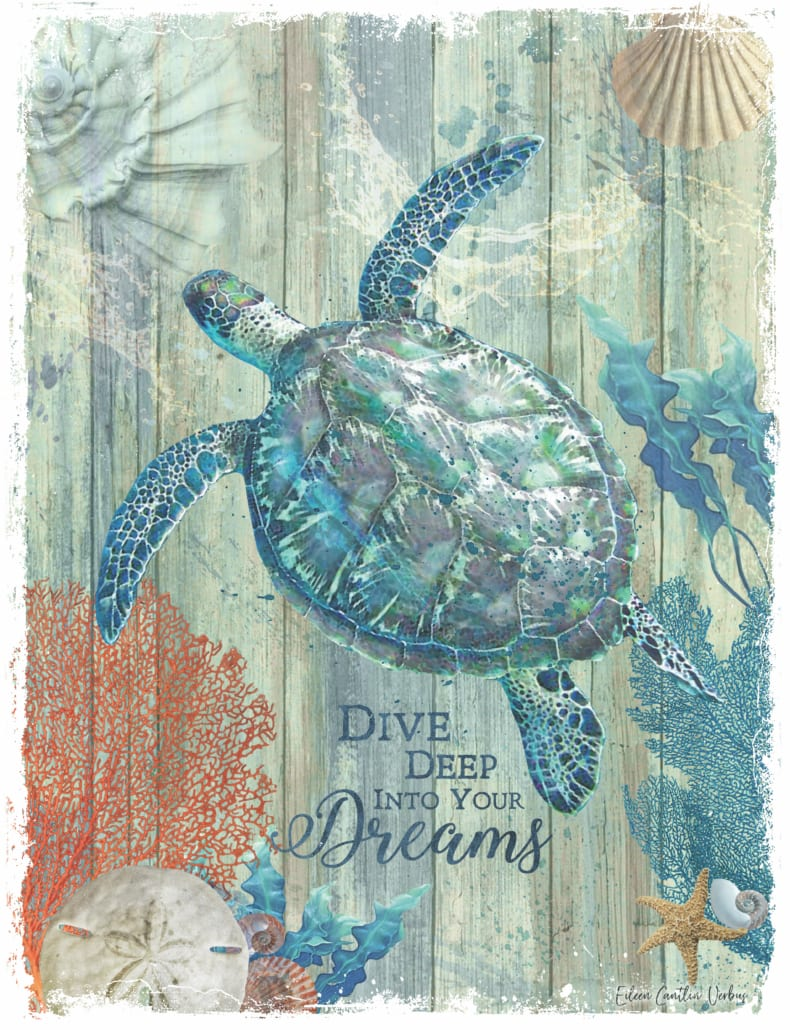 Coastal Decor Turtle